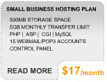 More Info on Business Hosting Plan